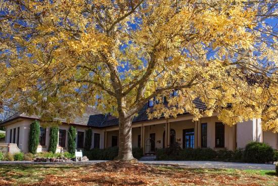 Super Peppers Manor House Sutton Forest Nsw Picture Of Sutton Download Free Architecture Designs Scobabritishbridgeorg