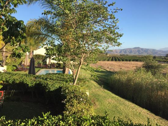 Rosendal Winery & Wellness Retreat: photo1.jpg