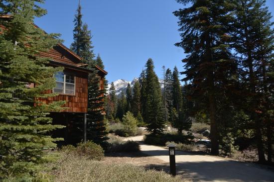 Wuksachi Lodge Photo