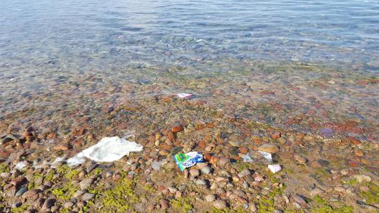 Swiss-Belresort Tala Bay, Aqaba: пакеты и объедки в море и на пляже