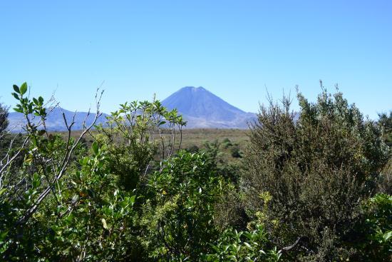 Turangi, Nueva Zelanda: Mount Ngauruhoe