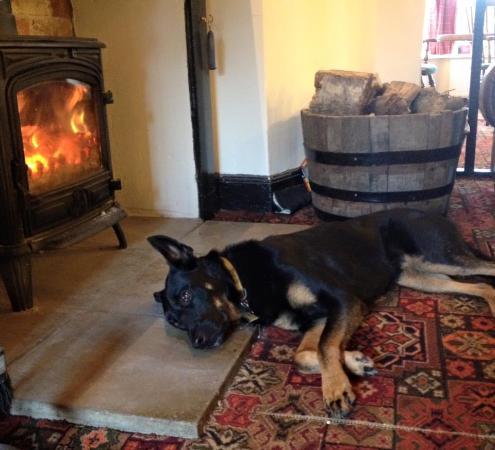 Hannington, UK: Log Fire (Dog Friendly)