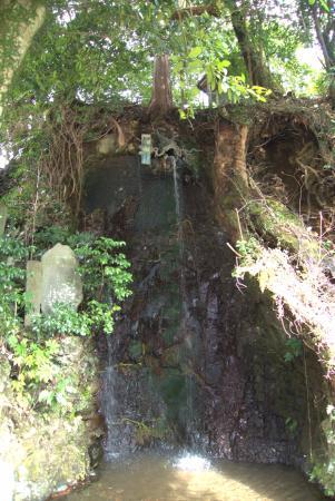 Roben Falls