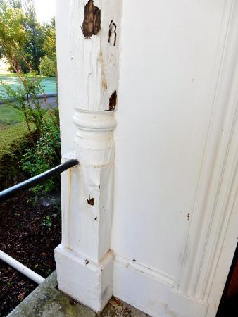 Hagley, Австралия: Wood rot.