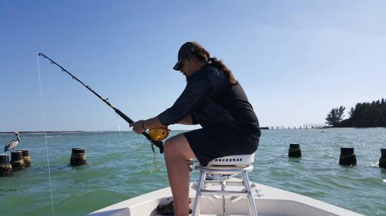 Boca Grande, Floryda: My babe pulling in a grouper.  Was so awesome to see.