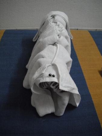 hotel cervantino: towel doggie!