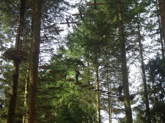 Coleford, UK: Junior Go Ape, Beechenhurst Lodge, Forest of Dean.