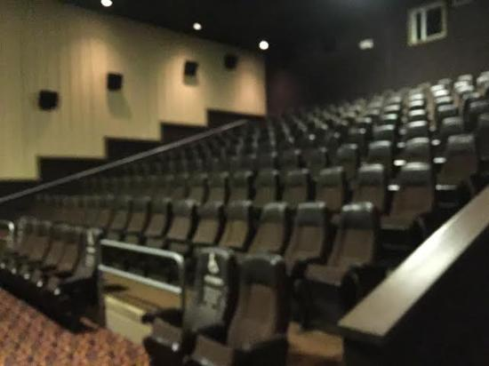 seating picture of mjr digital cinema 20 brighton