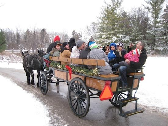 Spirit Of Christmas Past.Spirit Of Christmas Past Picture Of Heritage Hill State