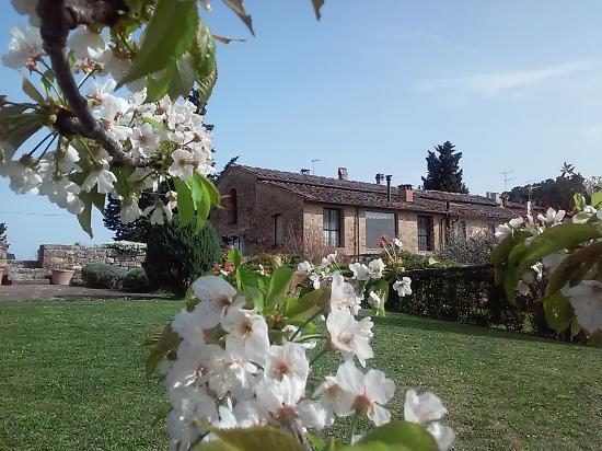 Torre di Ponzano - Chianti area - Tuscany -: Garden and view of the villa 'Il Fienile'
