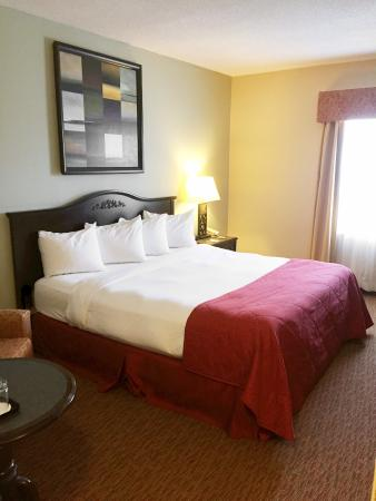 Quality Inn Sarnia: King Bed