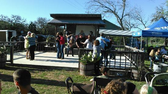 Sisterdale, TX : KIMG0622_large.jpg