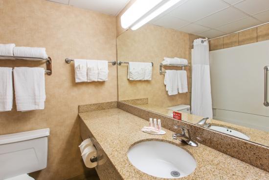 Ramada Sioux Falls Airport Hotel & Suites: Bathroom