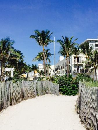 The Savoy Hotel South Beach Is Your Back Yard Love Old