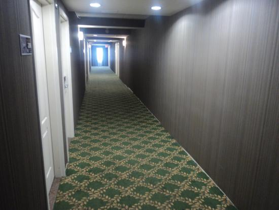 Hampton Inn by Hilton London: Hallway