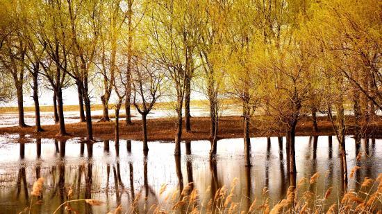 Suqian China  city pictures gallery : Suqian, China: photo4