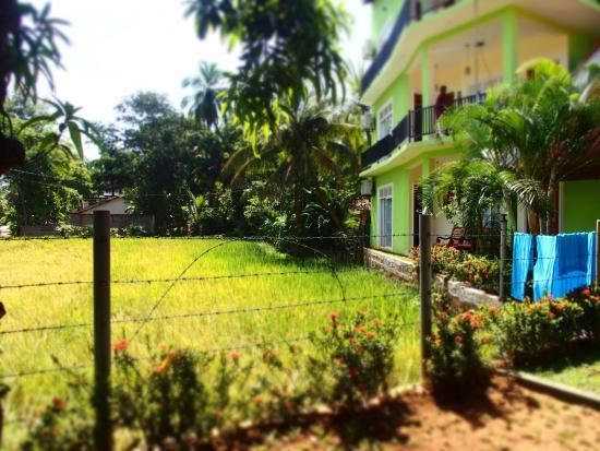 Nature Resort Tissamaharama: photo4.jpg
