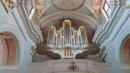 orgel picture of archcathedral holy name of the blessed virgin rh tripadvisor com