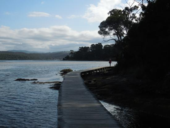 ‪The Merimbula Boardwalk‬