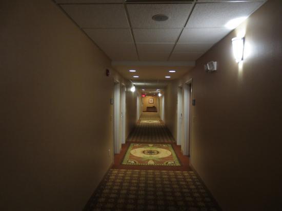 Hampton Inn Detroit / Utica - Shelby Township: View to the aisle