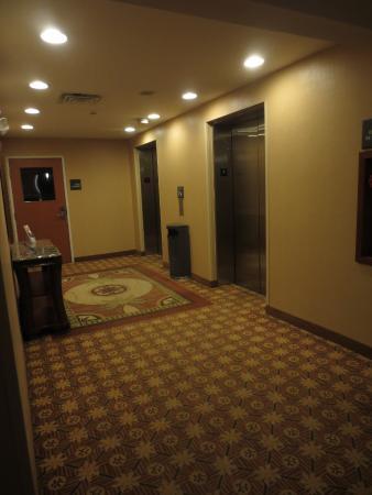 Hampton Inn Detroit / Utica - Shelby Township: View to the elevators