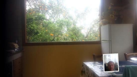 Villa Flavia: Un soggiorno da paradiso