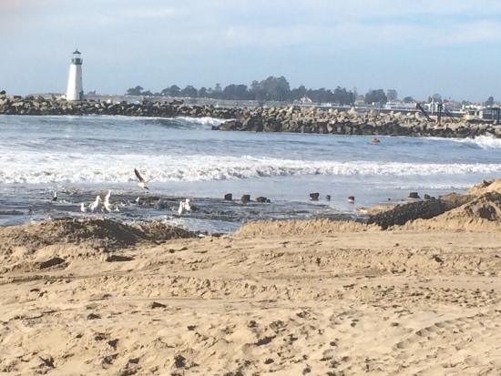 Photo of Santa Cruz By Twin Lakes Beach