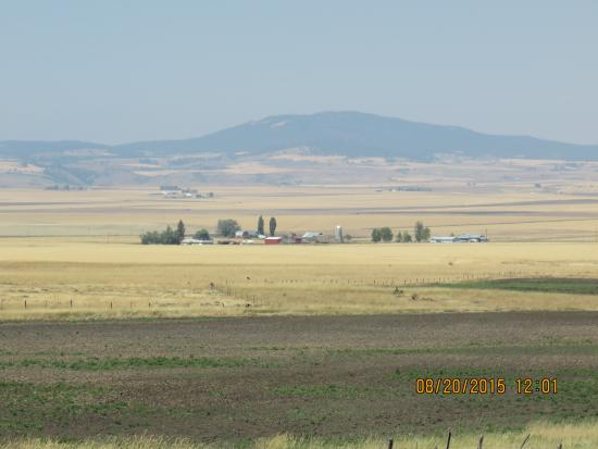 White Bird, ID: Farm and mountains
