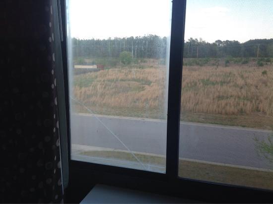 Comfort Suites Wilson I-95: photo1.jpg
