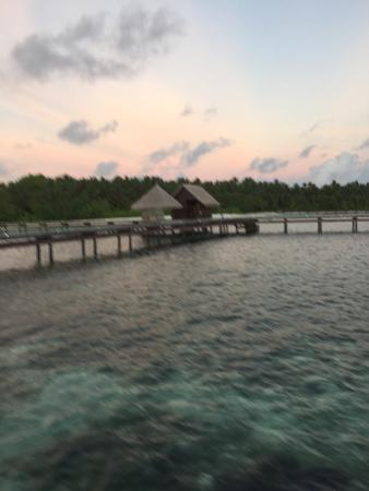 Shangri-La's Villingili Resort and Spa Maldives: photo1.jpg