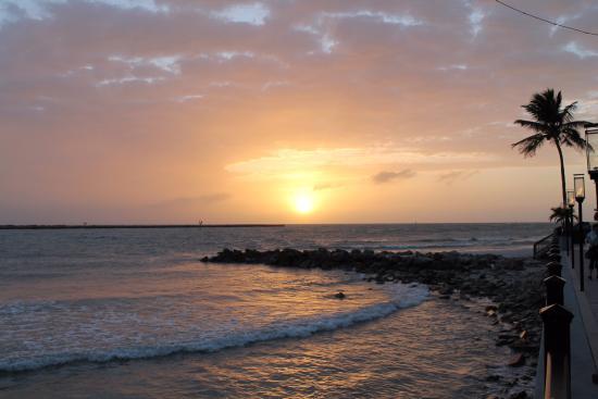 por do sol em clearwater beach picture of sand key park rh tripadvisor com