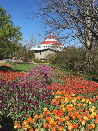 20160405 151208 Picture Of Cincinnati Zoo Botanical Garden Cincinnati Tripadvisor