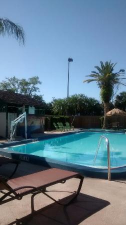 Magnuson Hotel Clearwater Beach: IMG_20160408_100246725_large.jpg