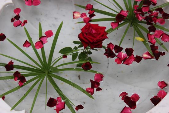 Riad l'Orangeraie: Lovely Touches