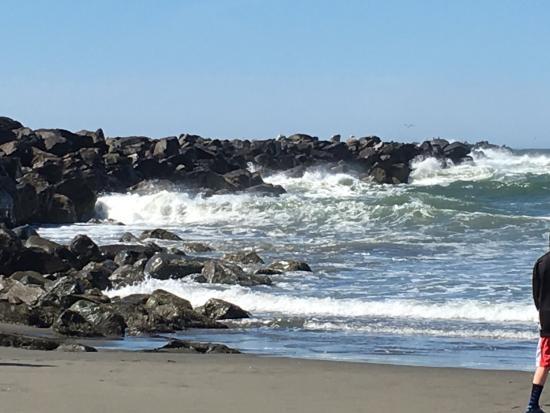 Ocean Shores, Ουάσιγκτον: photo1.jpg