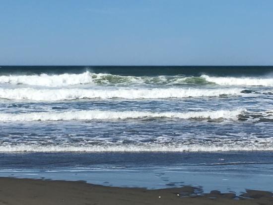 Ocean Shores, WA: photo2.jpg