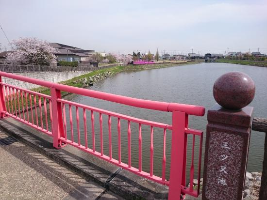 Mitsumata Pond Park