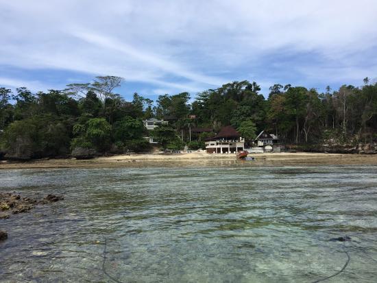 Bunaken Cha Cha Nature Resort: photo1.jpg