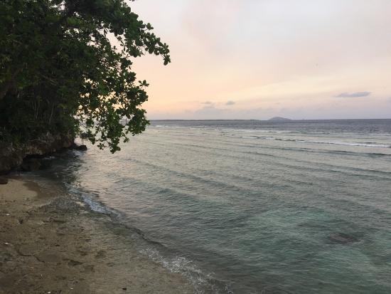 Bunaken Cha Cha Nature Resort : photo3.jpg