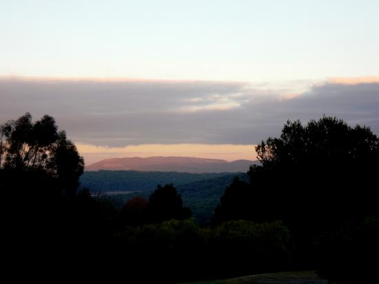 Kalorama, Australia: View from the deck outside the Reception Room.