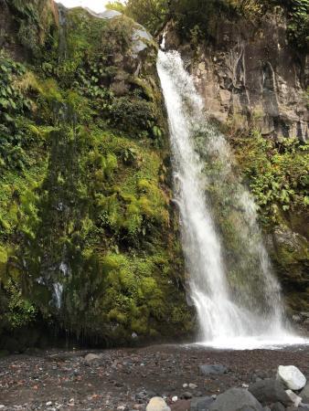 Dawson Falls: photo0.jpg