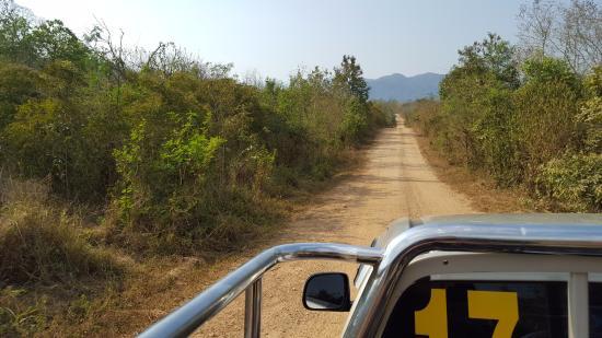 Prachuap Khiri Khan Province, Thailand: Sitting at the back of the ute