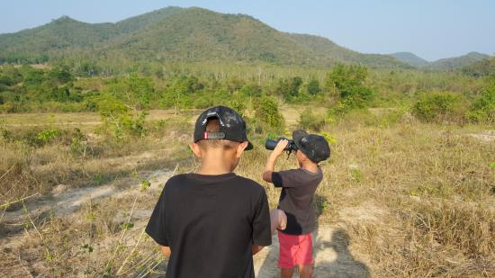 Prachuap Khiri Khan Province, Thailand: Found 2 elephants walking to the water hole
