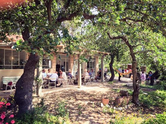 העגלה - קפה יזרעאלי, אלוני אבא - חוות דעת על מסעדות - Tripadvisor