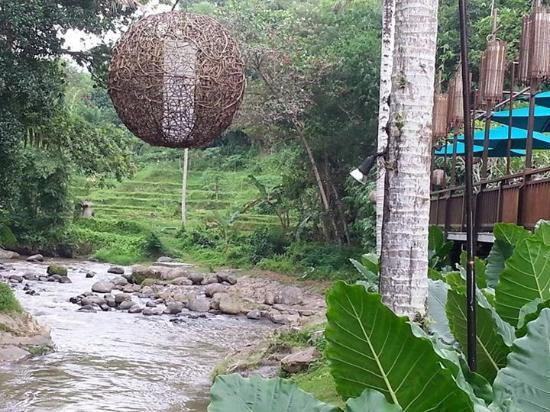 The Samaya Bali Ubud: Swept Away