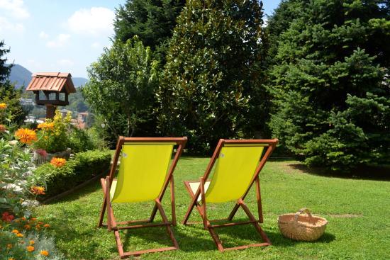 Il Giardino Botanico Bed and Breakfast: Garden