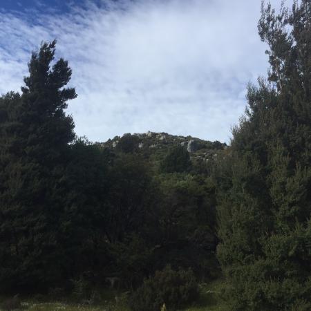 Weldborough, Australia: photo8.jpg