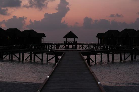 Fihalhohi Island Resort-bild