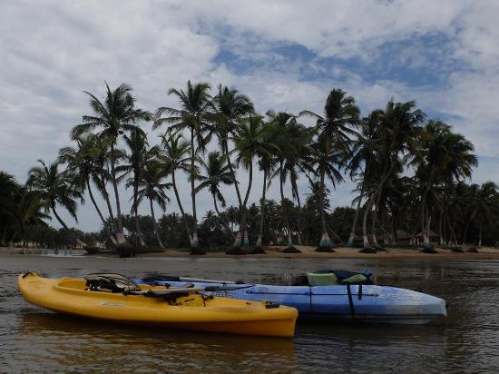 Ada, Ghana: Kayak lessons and tours to estuary and island communities