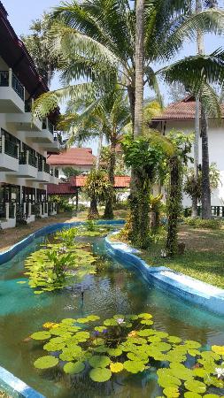 Amora Beach Resort: 20160408_105647_large.jpg